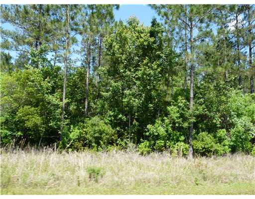 0 Wolf River Road And Big Creek Rd,Gulfport,Mississippi 39503,Lots/Acreage/Farm,Wolf River Road And Big Creek,204844