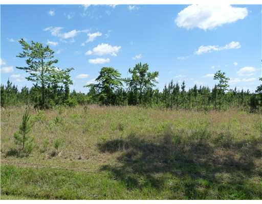 0 Big Creek Rd,Gulfport,Mississippi 39503,Lots/Acreage/Farm,Big Creek,204846