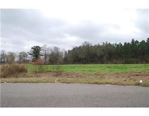 Lot 2 Oak Dr,Perkinston,Mississippi 39573,Lots/Acreage/Farm,Oak,249395