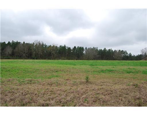 Lot 1 Oak Dr,Perkinston,Mississippi 39573,Lots/Acreage/Farm,Oak,249359