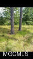 13613 Pine Ave, Ocean Springs, Mississippi 39565, ,Lots/Acreage/Farm,For Sale,Pine,340884