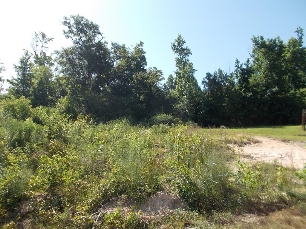 78 Lewis Drive, Dry Branch, GA 31020