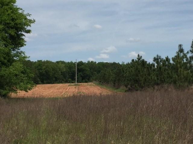 0 Bob Hale Drive, Plains, GA