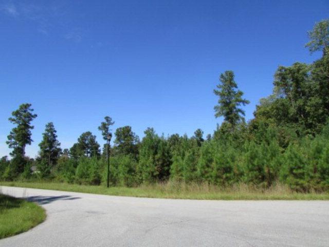 45 Red Fox Drive, Haddock, GA 31033