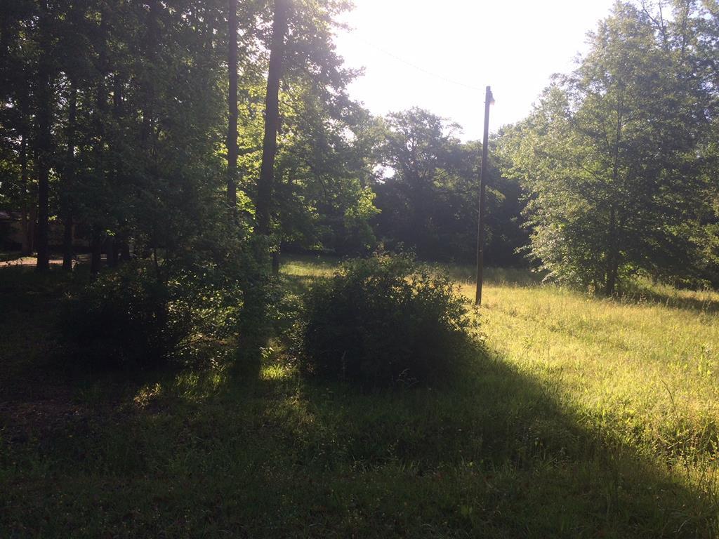 Lt 19&20 Ruby Road, Jackson, GA 30233