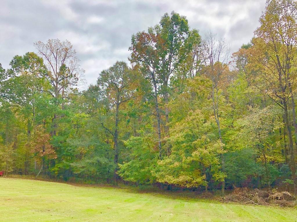 5886 Kentucky Downs , Macon, GA 31210