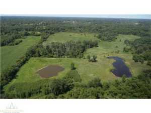 Property for sale at Shaftsburg,  MI 48882