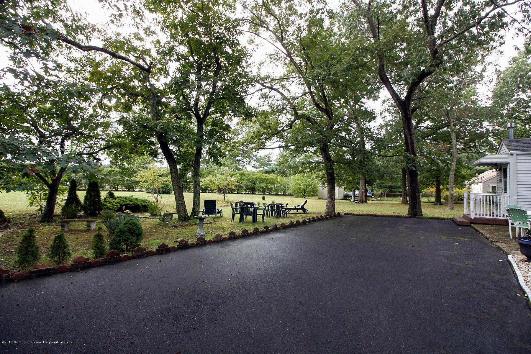 Parklike Yard