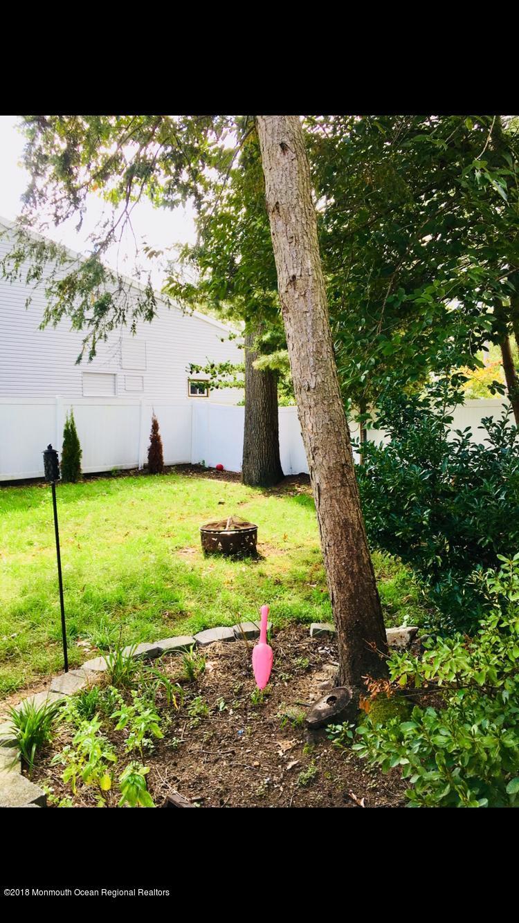 Grass area in Backyard