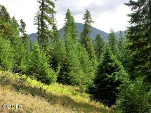 Nhn-Graves Creek-Loop, Thompson Falls Montana Real Estate Listings