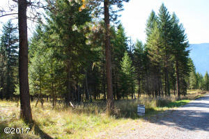 Nhn-Big Fir-Drive, Thompson Falls Montana Real Estate Listings
