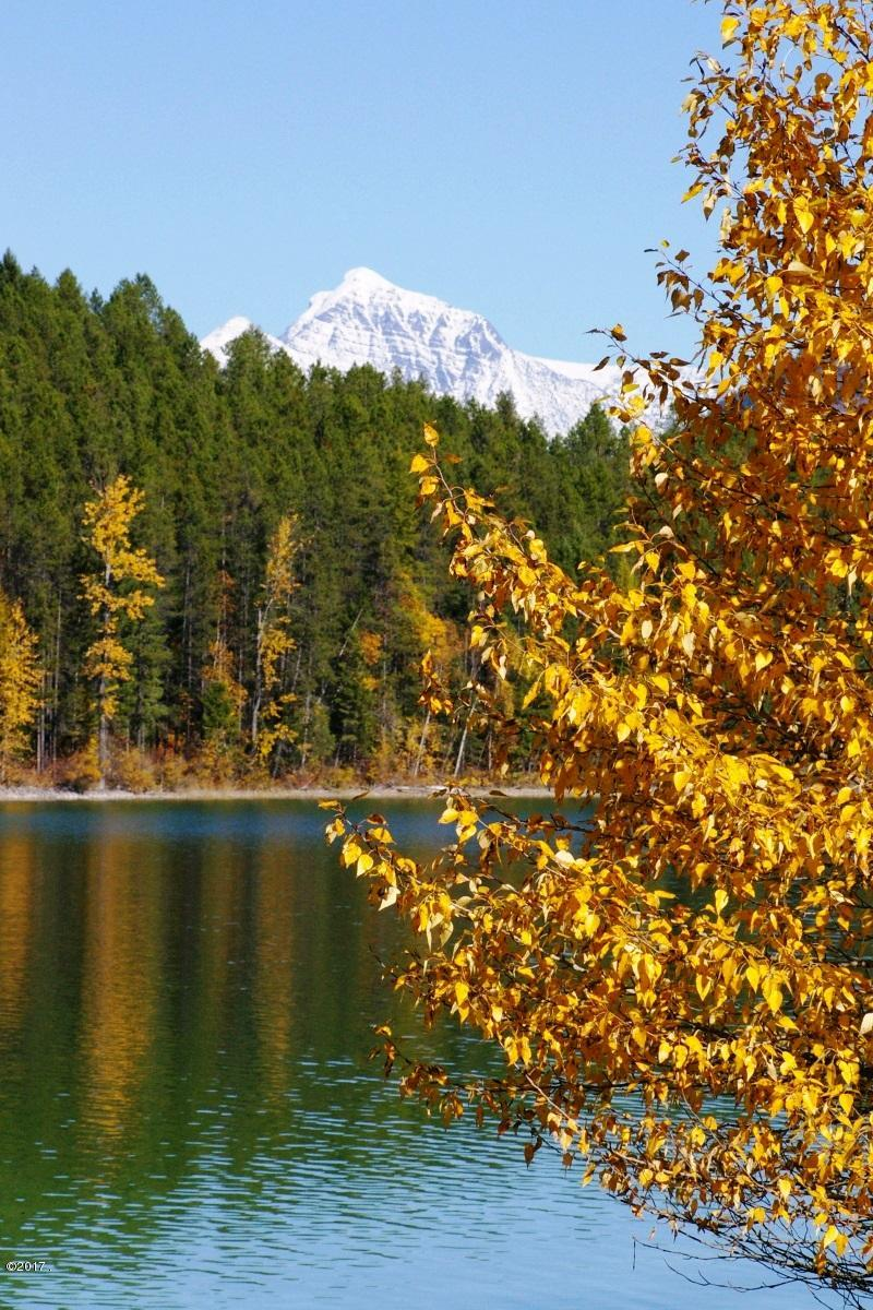 Fall at Lake Five