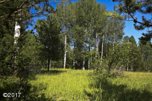Montana horse property, pasture, Aspens, pines, timbered, private, easy access, Northwest Montana, recreation, ranch, farm, livestock