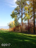Fall View down shore line.