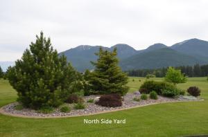 North Side Yard