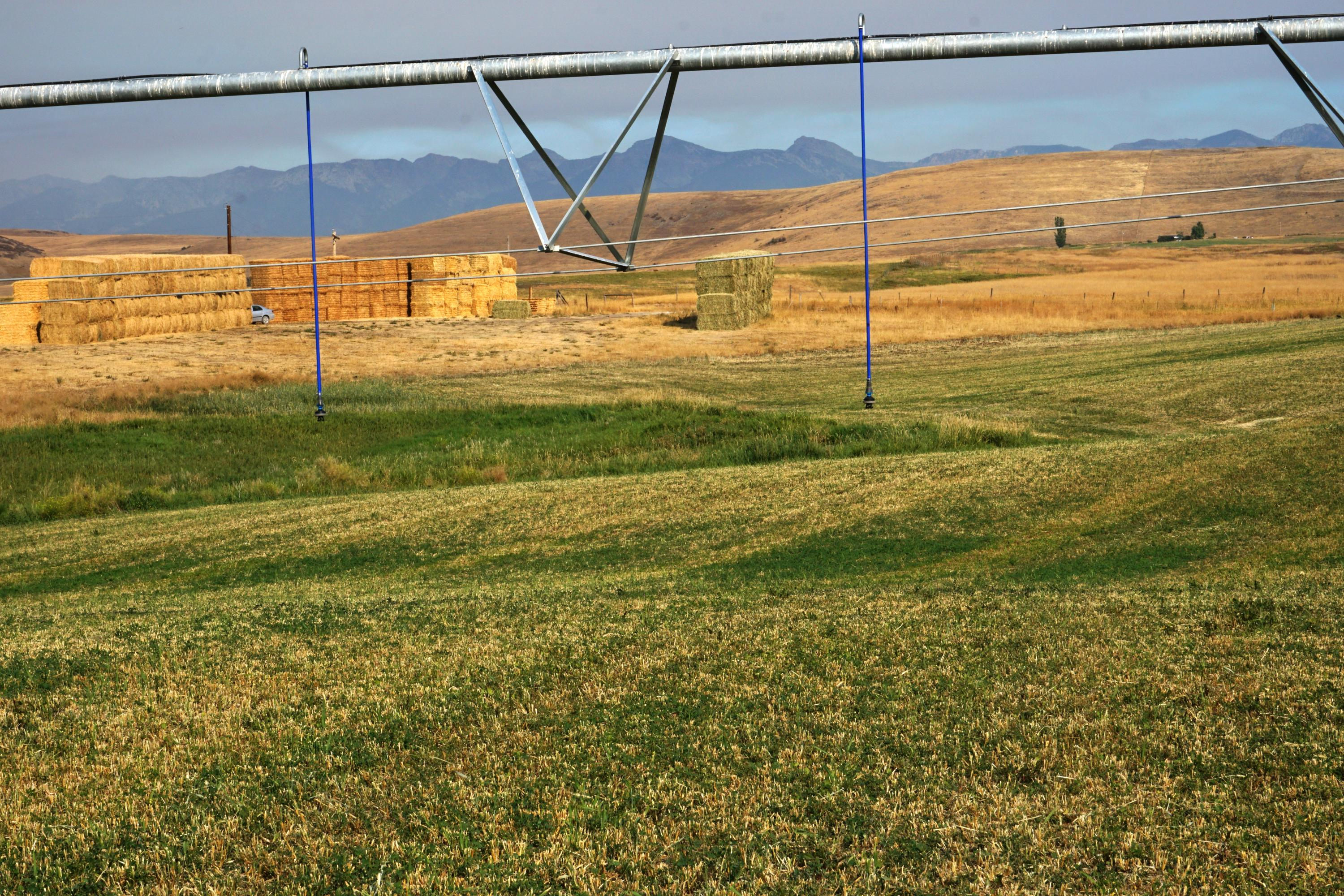 Gillette Lane Ronan Montana 59864 Land For Sale
