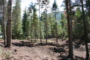 Nhn-Woodside-Road, Thompson Falls Montana Real Estate Listings