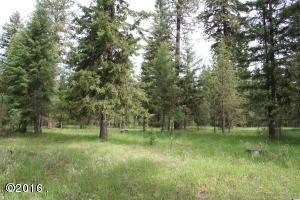 Nhn-Cherry Creek-Road, Thompson Falls Montana Real Estate Listings