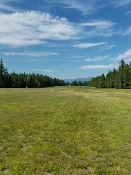 Ferndale Landing Grass Strip Looking Nor