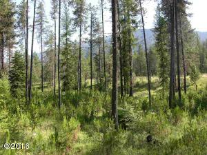 Nhn-Fir-Street, Trout Creek Montana Real Estate Listings