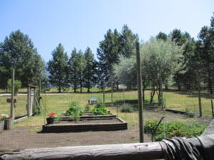 Fenced Garden Area