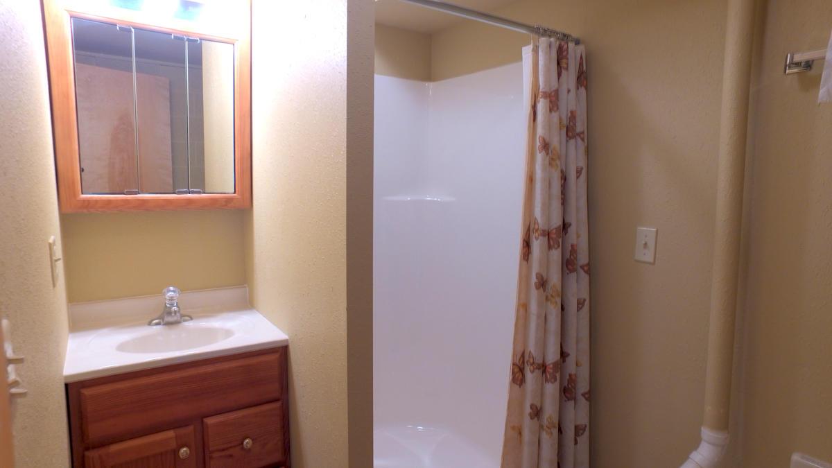 Bathroom 3 - Lower Level