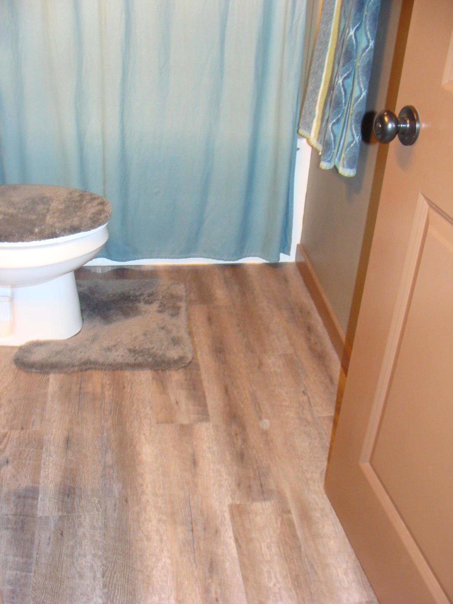 lower level bath flooring