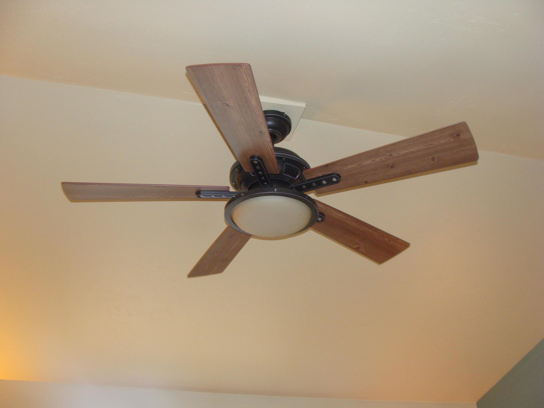 specialty ceiling fan