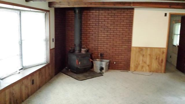 LR wood stove