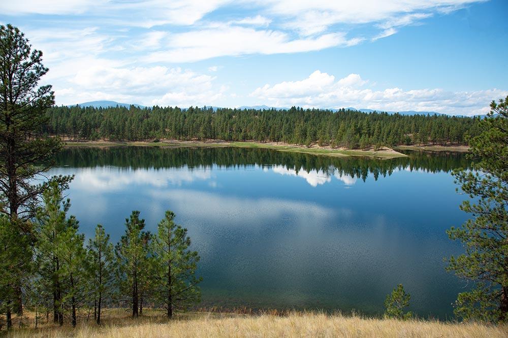 Moran Lake Reflections