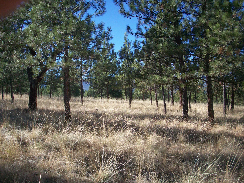 Find Land for Sale Helena MT