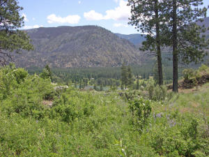 Nhn-Bad Rock-Lane, Thompson Falls Montana Real Estate Listings
