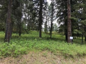 Lot 20-Cornerstone-Road, Thompson Falls Montana Real Estate Listings