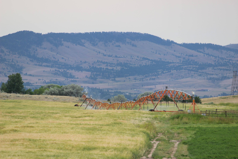 Summer Pivot Irrigation