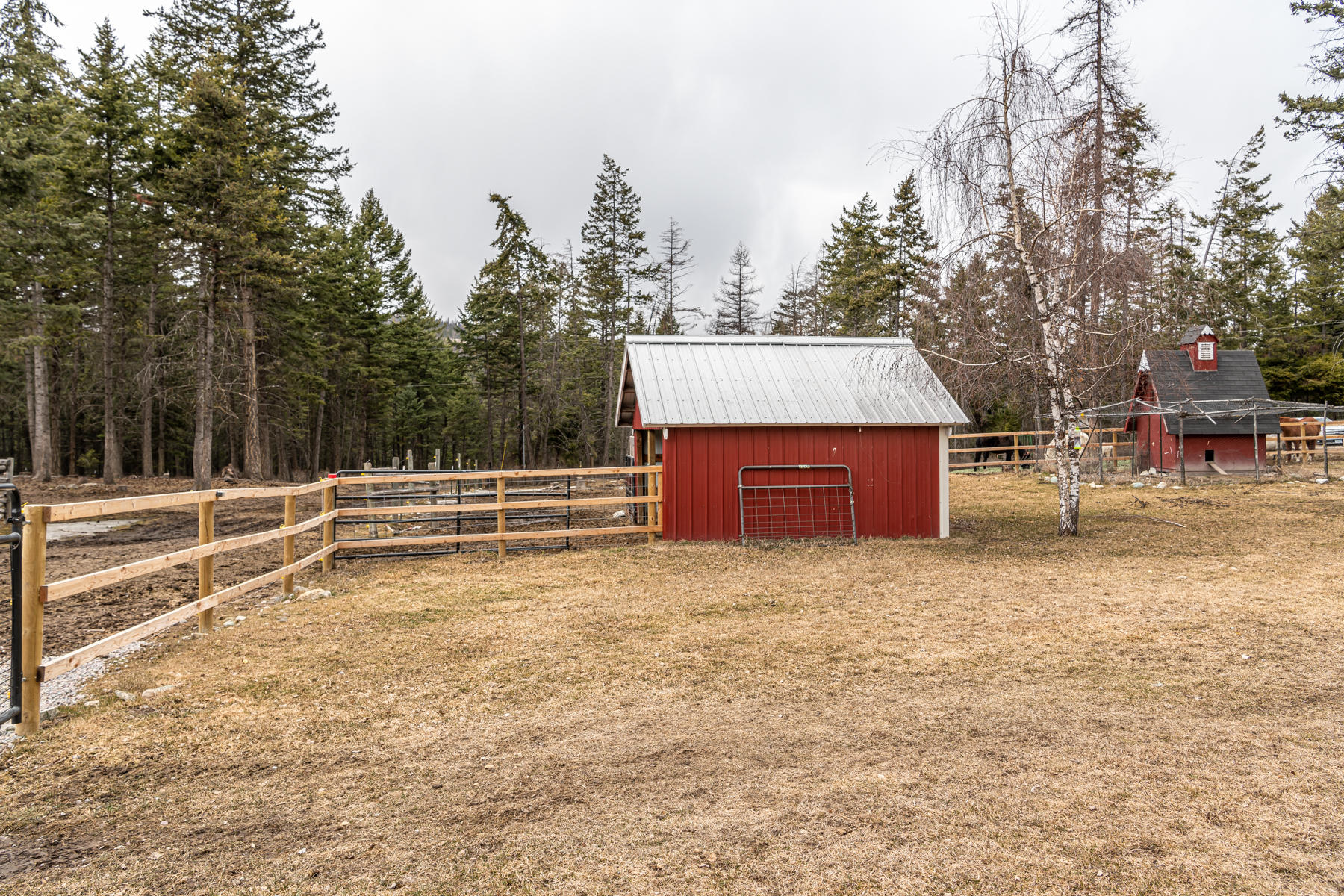 Outbuilding/Animal Pen