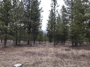 Nhn-Deer Run-Road, Trout Creek Montana Real Estate Listings