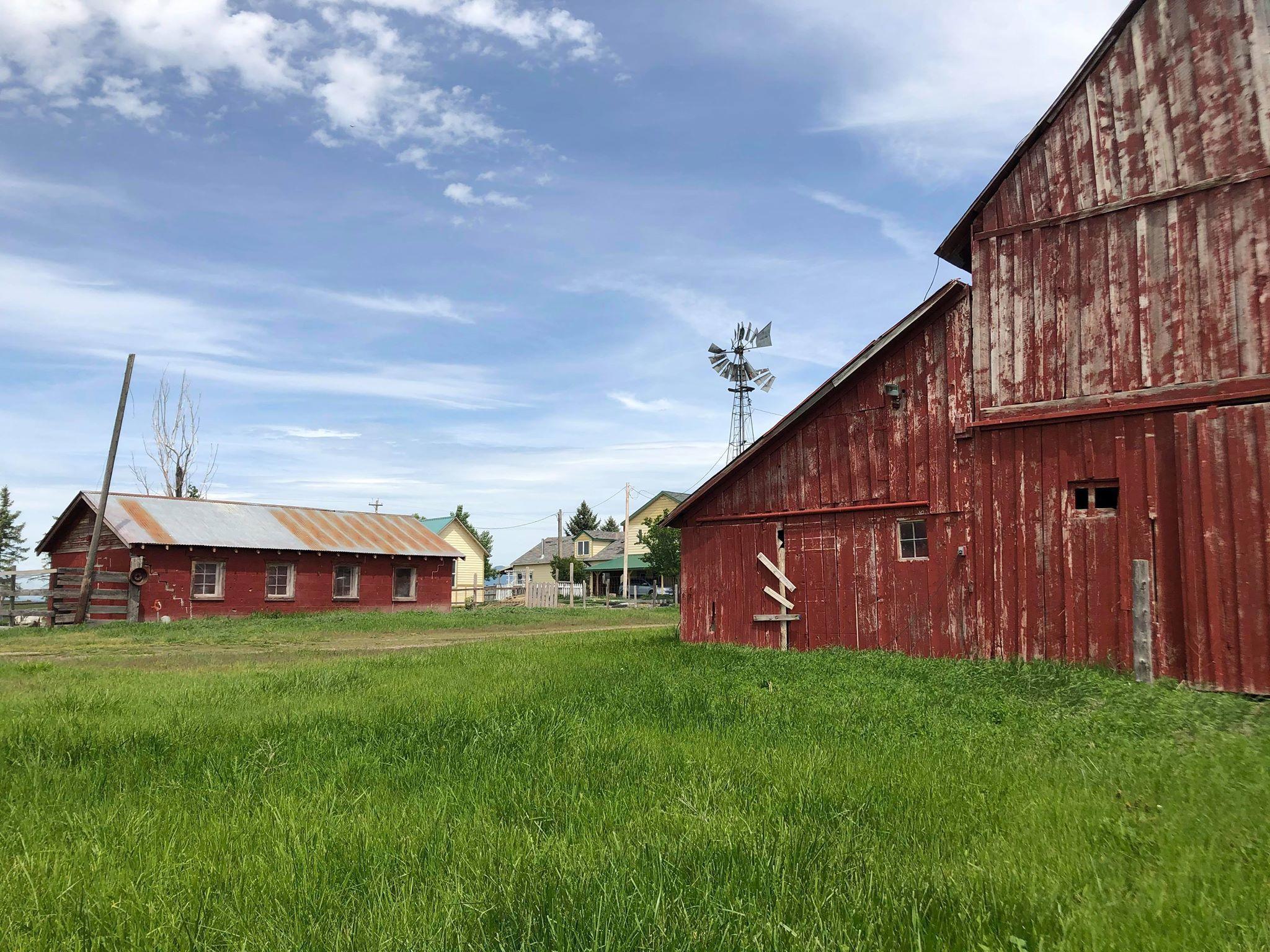 Barn & Chicken Coop