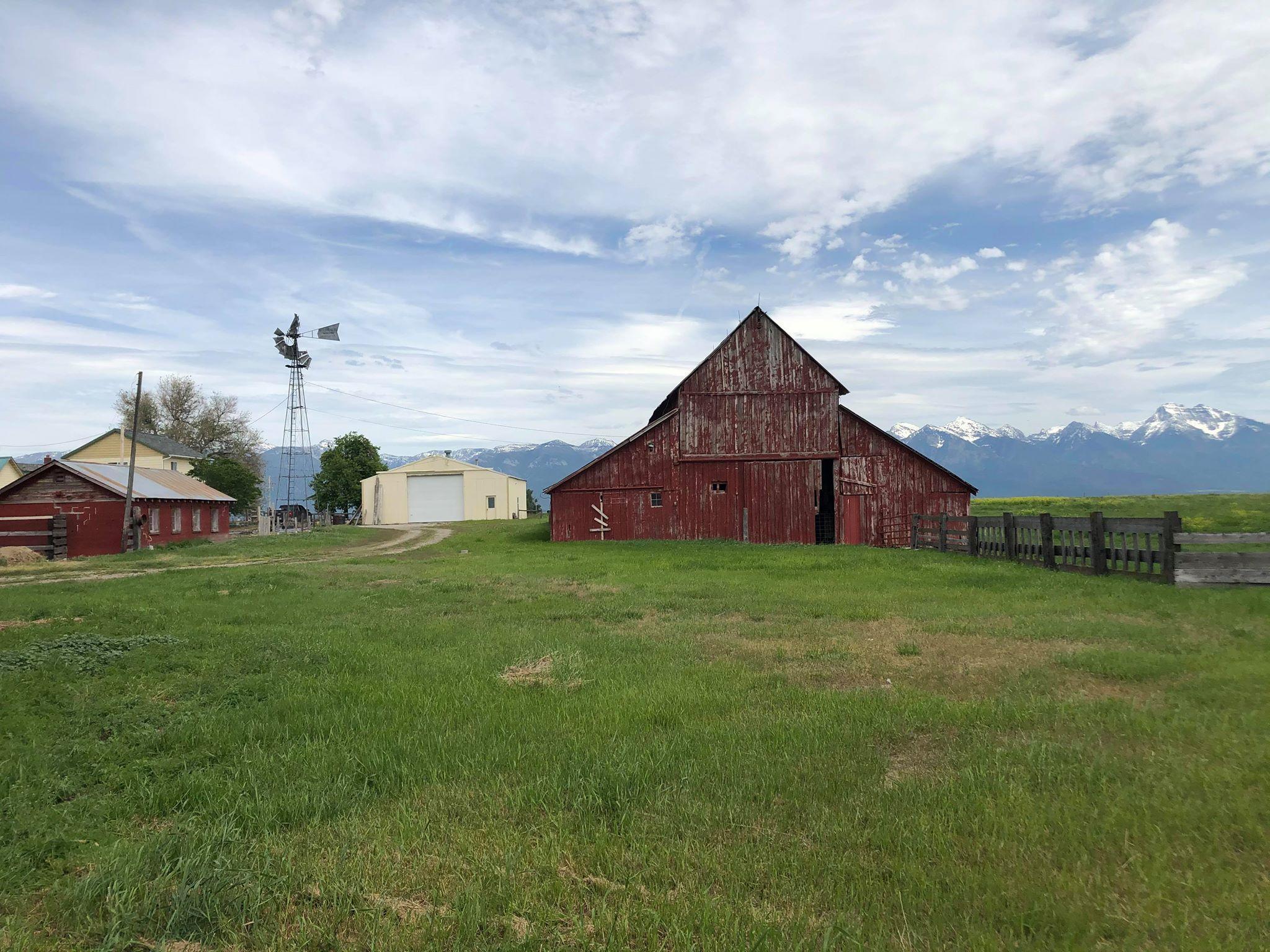 Barn, Chicken Coop, Shop