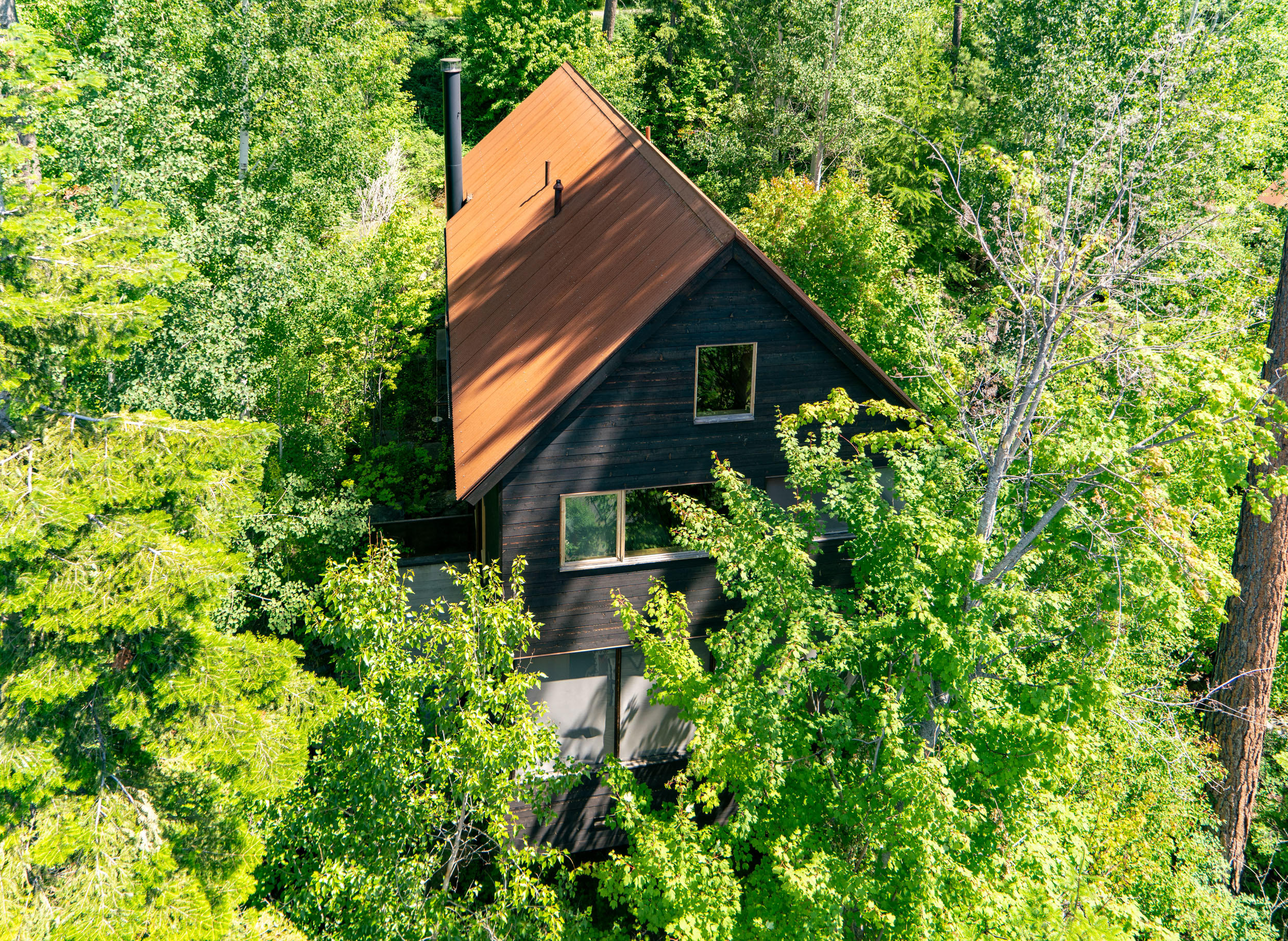 Guest House - Tree House Aerial