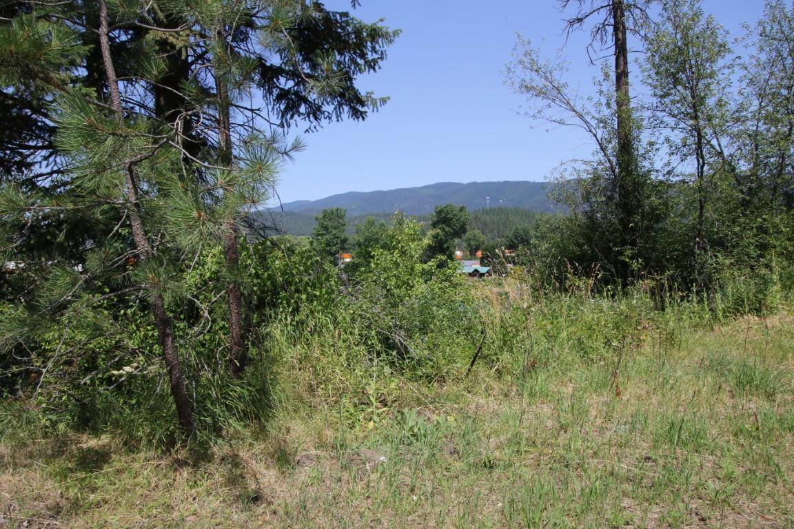505 Mill Creek Road 21 (Medium)