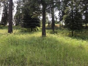 Lot 19-Cornerstone-Road, Thompson Falls Montana Real Estate Listings
