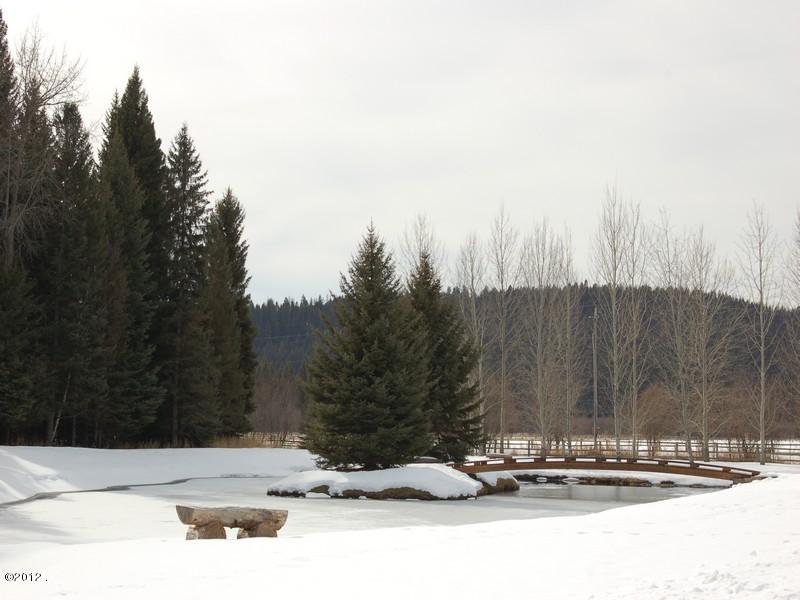 Foot bridge in winter
