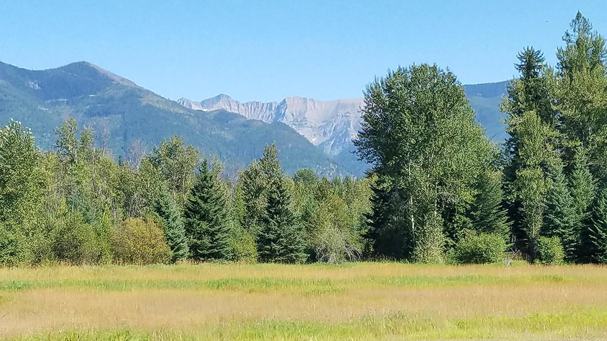 Swan Peak view