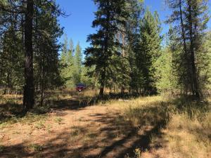 Nhn-Washington-Drive, Trout Creek Montana Real Estate Listings