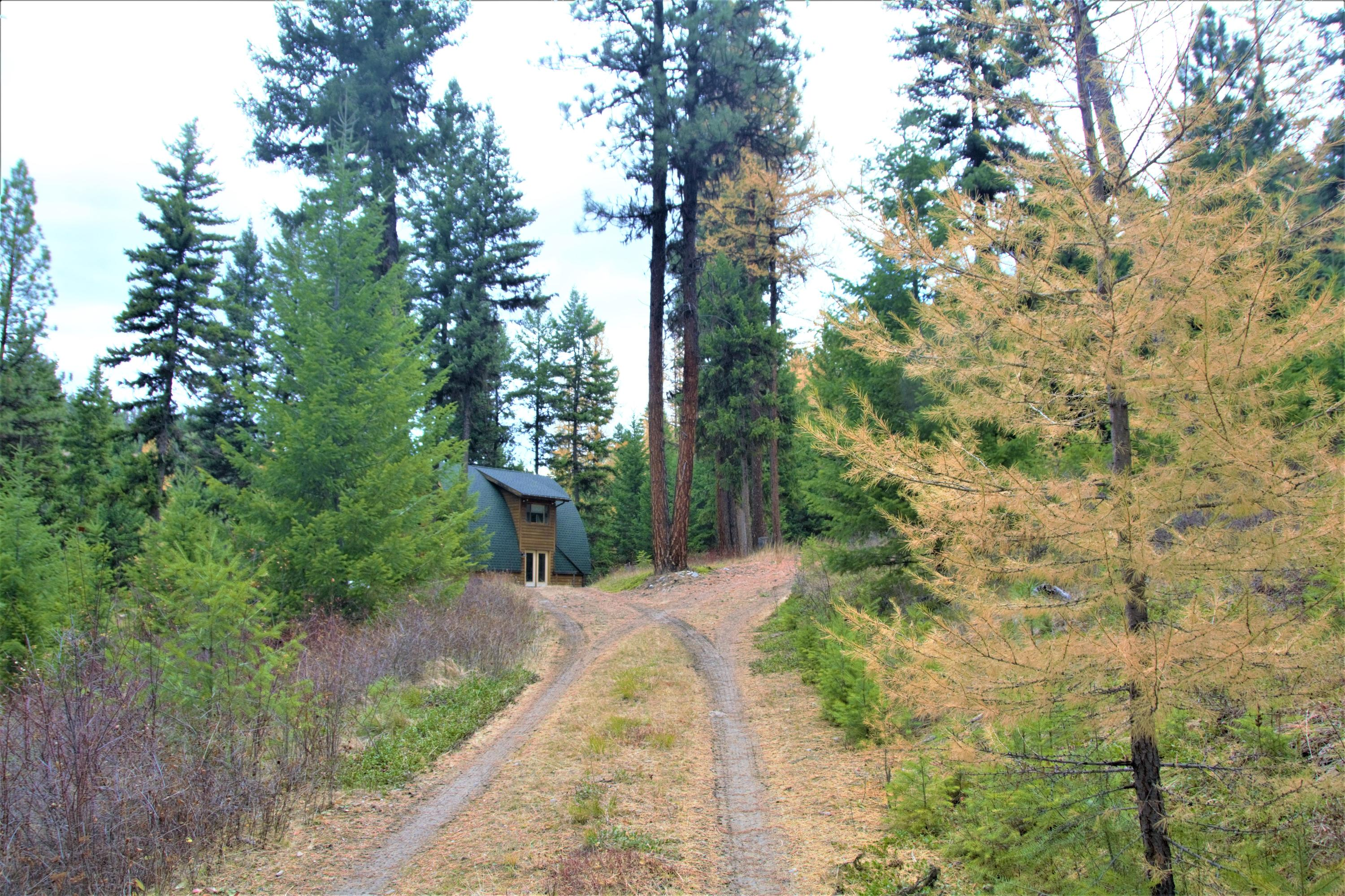 Driveway to Cabin for Sale