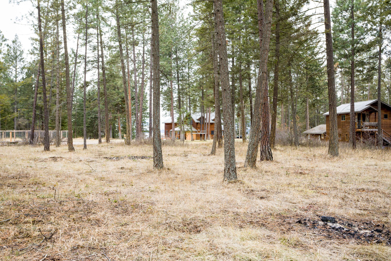 6.80 Acres - Meadow/Tree Mix