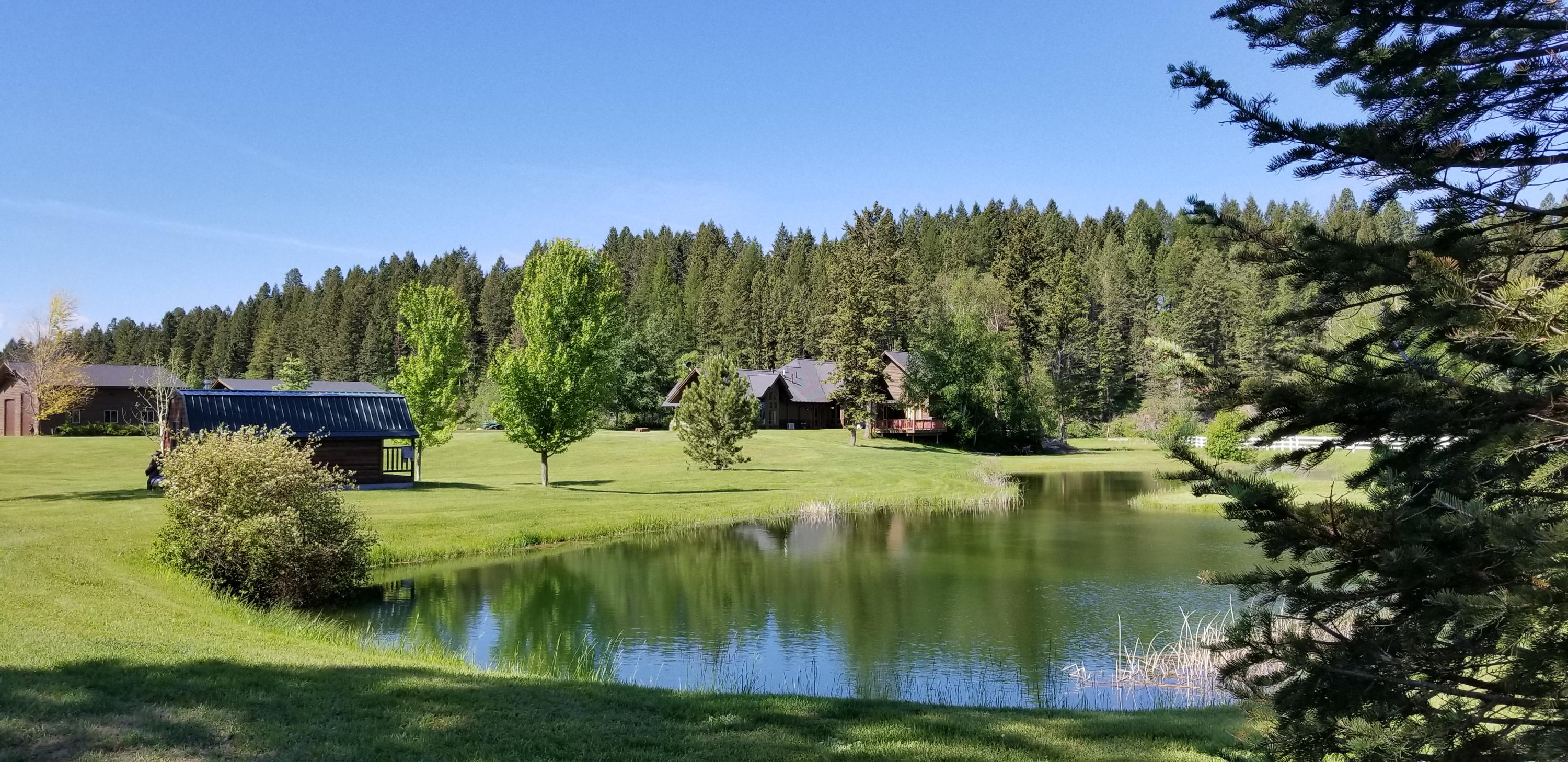 Guest Cabin and Pond