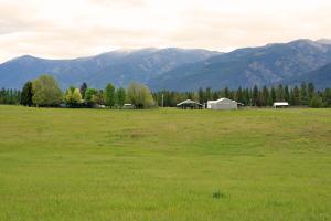60-Coyote Run-Lane, Trout Creek Montana Real Estate Listings