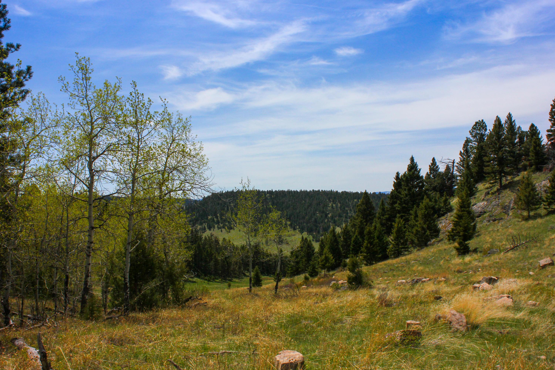 Aspen Meadow-Montana-Little Belt Ranch