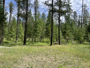 Nhn-Fir-Street, Trout Creek Montana Real Estate Listings